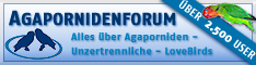 Agapornidenforum.net